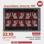 Setorial do TRT-2 debateu condições de trabalho e luta contra o retorno presencial