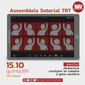 TRT: Setorial nesta quinta, às 18h, debate próximos passos da greve sanitária em defesa da vida
